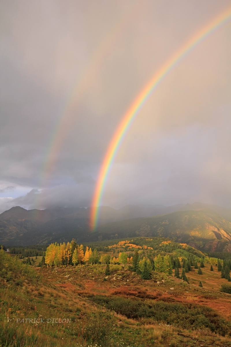 IMG_7855-montana-mine-rainbow-aspen-large2