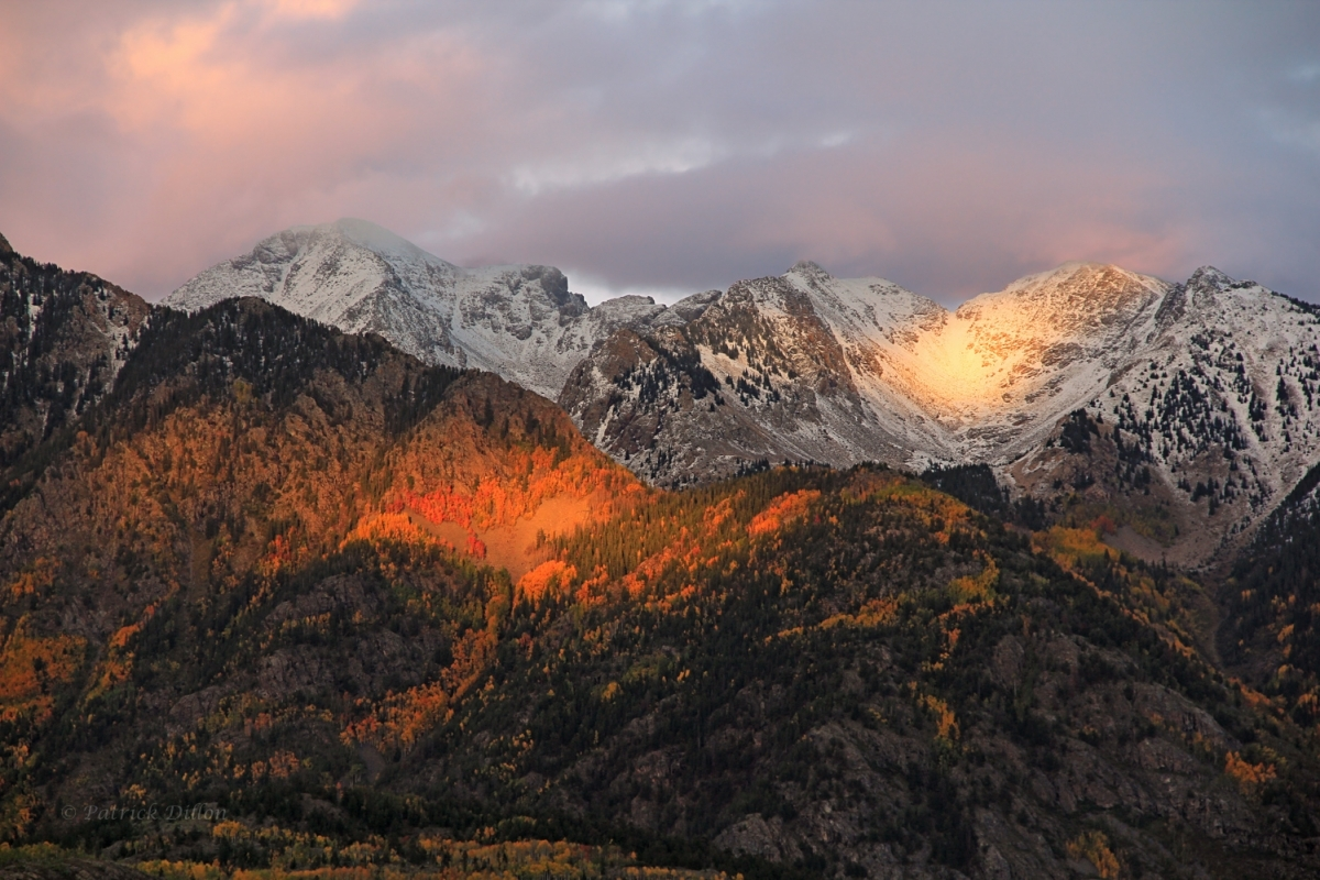 Aspen glow west needles sunset image 1755