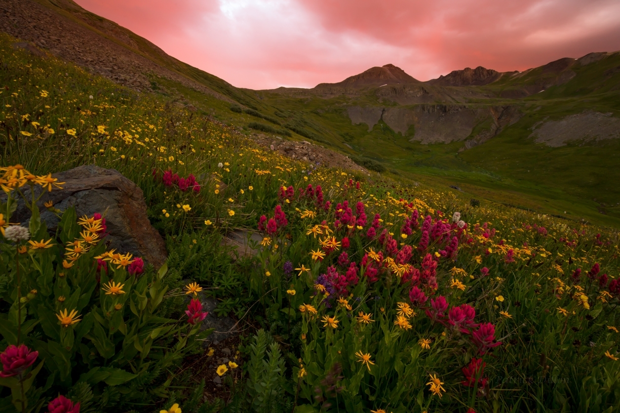 San juan Mountains paintbrush sunset